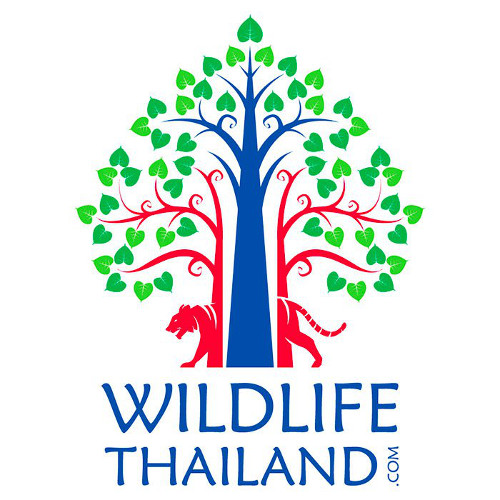 wildlife thailand forum