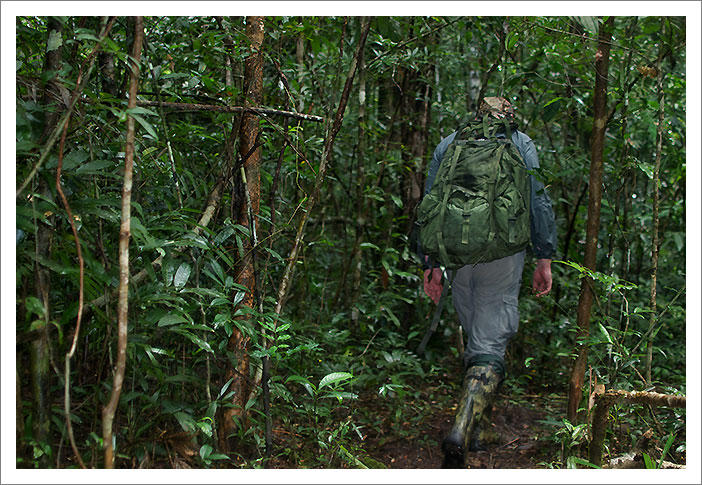 Photo of a jungle trekker in Thailand