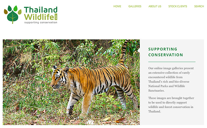 thailand wildlife stock photography conservation
