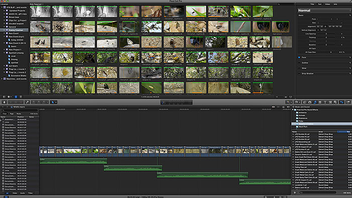 video processing in final cut pro